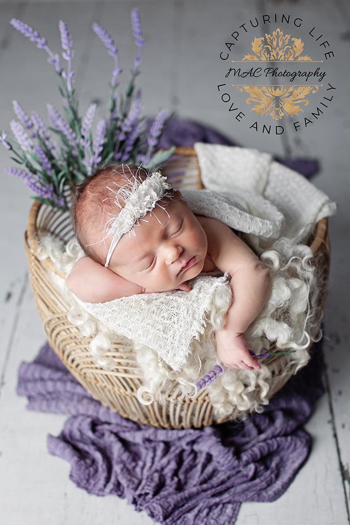 Baby Photography Seacoast NH